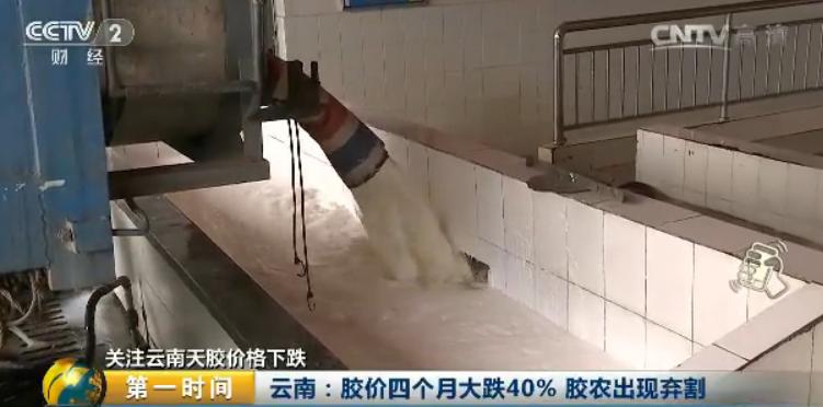 云南农垦集团西双版纳景阳橡胶有限责任公司总经理 邓文华:这两天收胶的价格根本上在一万二每吨左右,这个价格是比较低的。前几年在三万四万的时候,整个胶农的割胶积极性很高。